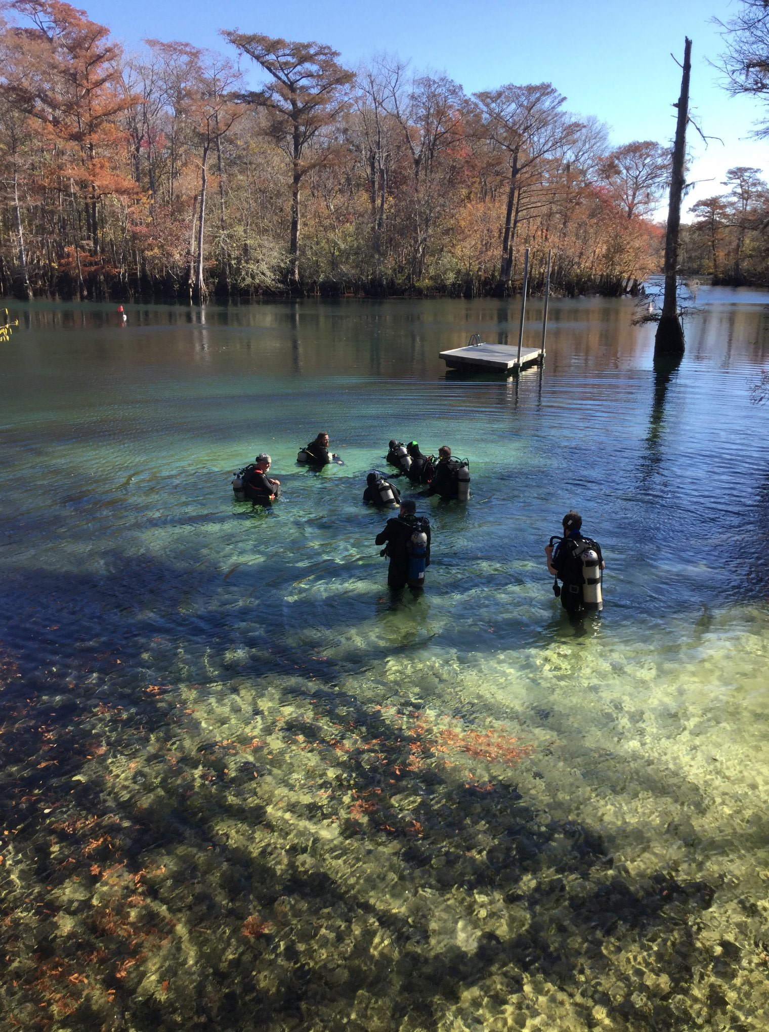 Gallery Gulf Coast Divers Dive Alabama Florida And Mississippi